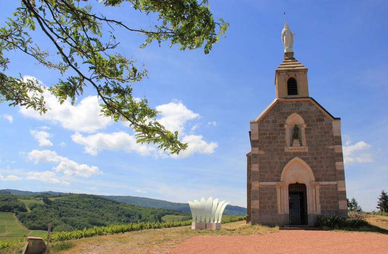 Dans les vignes du Beaujolais