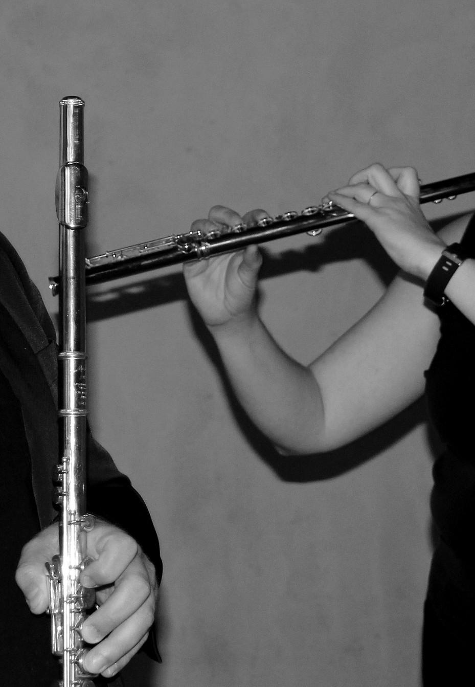 Deux flûtes traversières