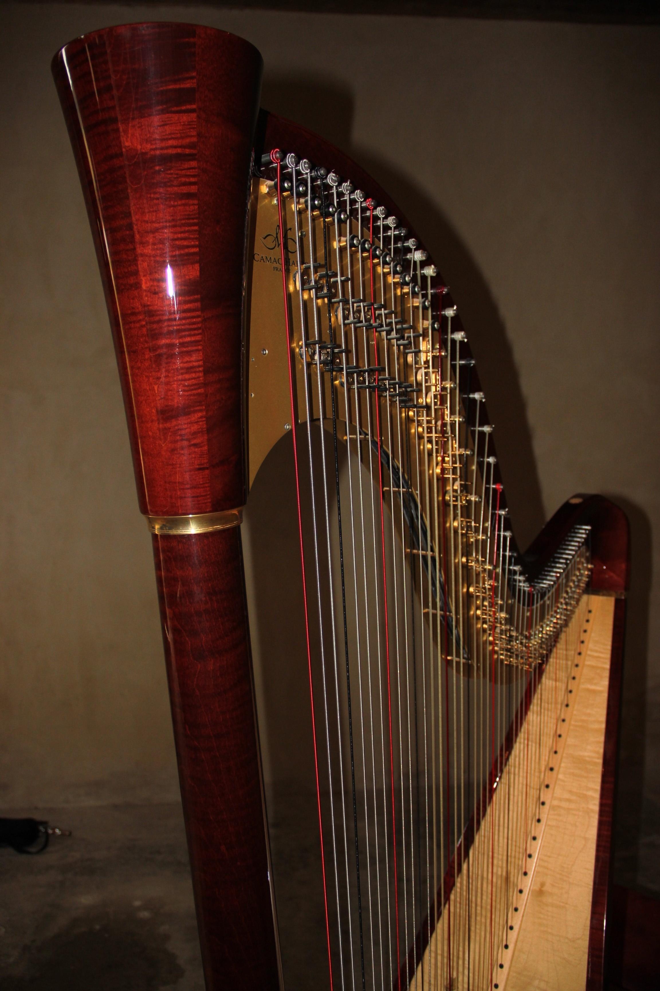 La harpe de Dorothée Cornec