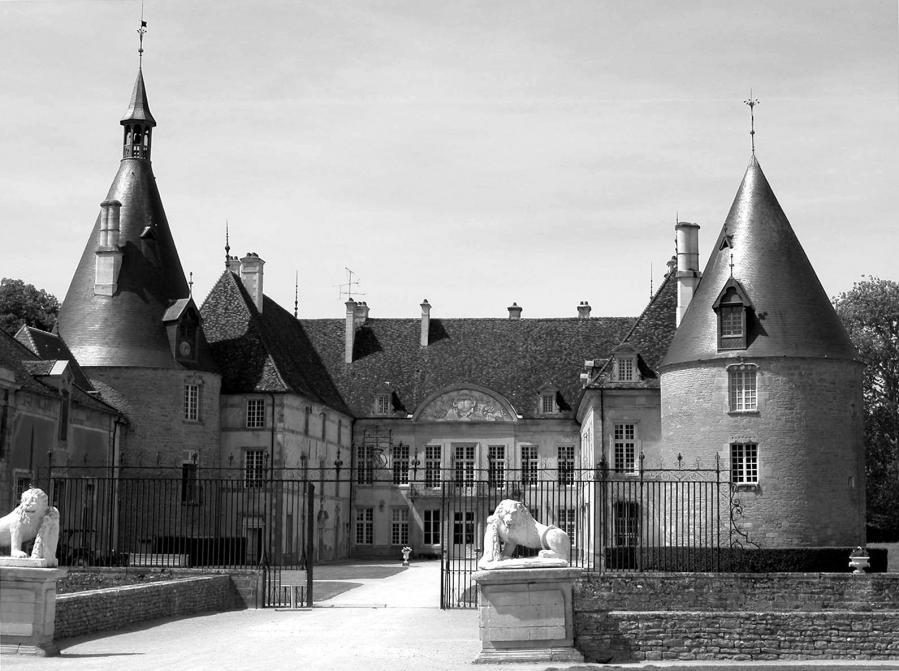 2005 06 09 chateau de commarin 146 03 nb