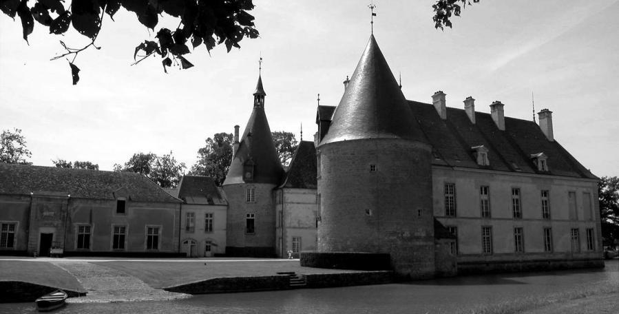 2005 06 09 chateau de commarin 154 03 nb elargie 02