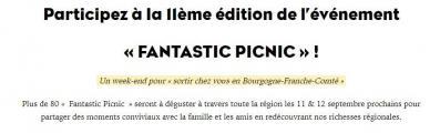 Fantastic picnic 2021 03