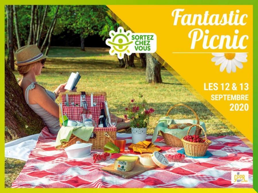 Image fantastic picnic 2020