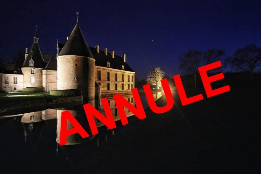 Photo chateau nocturne 038annul2